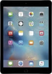 Apple iPad Air 2 32 GB 9.7 inch with Wi-Fi Only  (Space Grey)